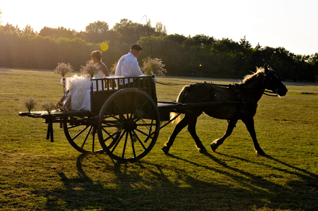 Mariée dans un champ d'herbe