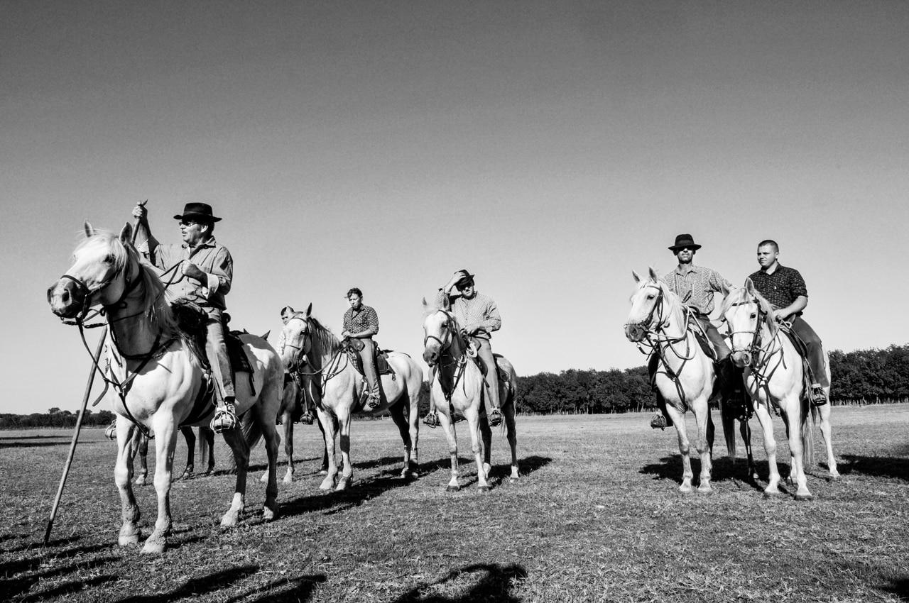 Cavaliers avec leurs chevaux